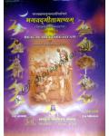 Bhagavad Gita Bhasyam 3 vols